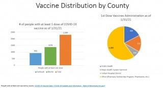 COVID-19 Vaccination Update 1/31/21